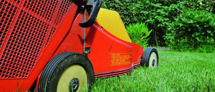 Familles archives aide domicile 90 belfort for Espace vert emploi